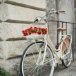 Stock Photo: Flowered bike in Italy