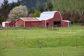 Country barn. — Stock Photo