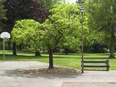 Public park. — Stock Photo