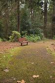 Una panchina, portland oregon. — Foto Stock