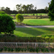 Golf course view from balcony — Stock Photo