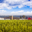 Stock Photo: Blurry Field with Farm Buildings in background