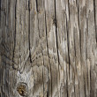 Interior Design - Wooden Wall - Stock fotografie