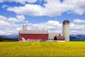 红色农场 — 图库照片