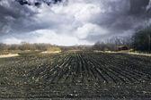 černá zem s bouřlivé nebe a mlha — Stock fotografie