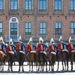 horse guard — Stock Photo