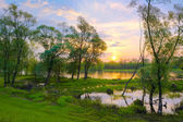 Sunrise over the Narew river, Poland. — Stock Photo