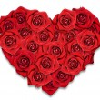 Red roses in the shape of the heart. White background. — Stock Photo #8619108