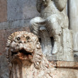 Lion of the Cathedral of Ferrara - Italy - Stock Photo