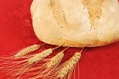 Bread made at home 002 — Foto Stock