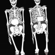 Two skeletons — Stock Photo