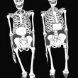 Stock Photo: Two skeletons