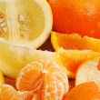 Oranges, grapefruits and tangerines — Stock Photo