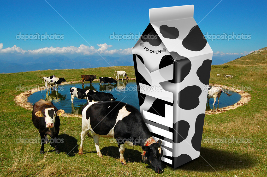 White carton milk with black spots and cows grazing in the mountains — Stock Photo #8237070