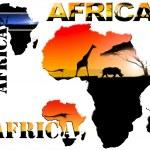 Set Africa Map Illustration — Stock Photo