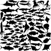 74 Vector Silhouettes of fish — 图库矢量图片