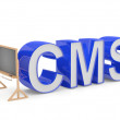 CMS sign. Programming education concept — Stock Photo #8273715
