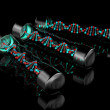 Stock Photo: DNStrands. 3D model on black background