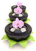 Spa stones with flowers and leaves. 3D concept — Stockfoto
