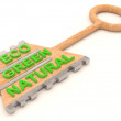 Eco wooden key. 3D model — Stock Photo