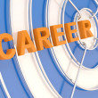Stock Photo: Career concept. Dartboard and arrow
