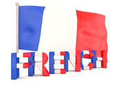 French flag. 3D model — Stock Photo