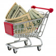 Shopping cart with money — Stock Photo #9924807