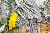 Image of Buddha,thailand — Stock Photo