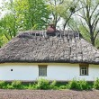 Ancient hut with a straw roof — Lizenzfreies Foto