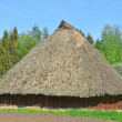 Stock Photo: Ancient barn with straw roof