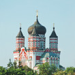 Orthodox cathedral in Feofaniya — Stock Photo #8128385