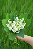Lily of the valley (convallaria majalis) in hand — Stock Photo