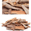 Cinnamon — Stock Photo #8071759