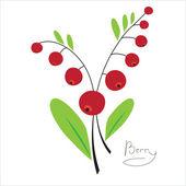 Red berries — Stock Vector