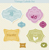 Vector set of vintage frames — Stock Vector