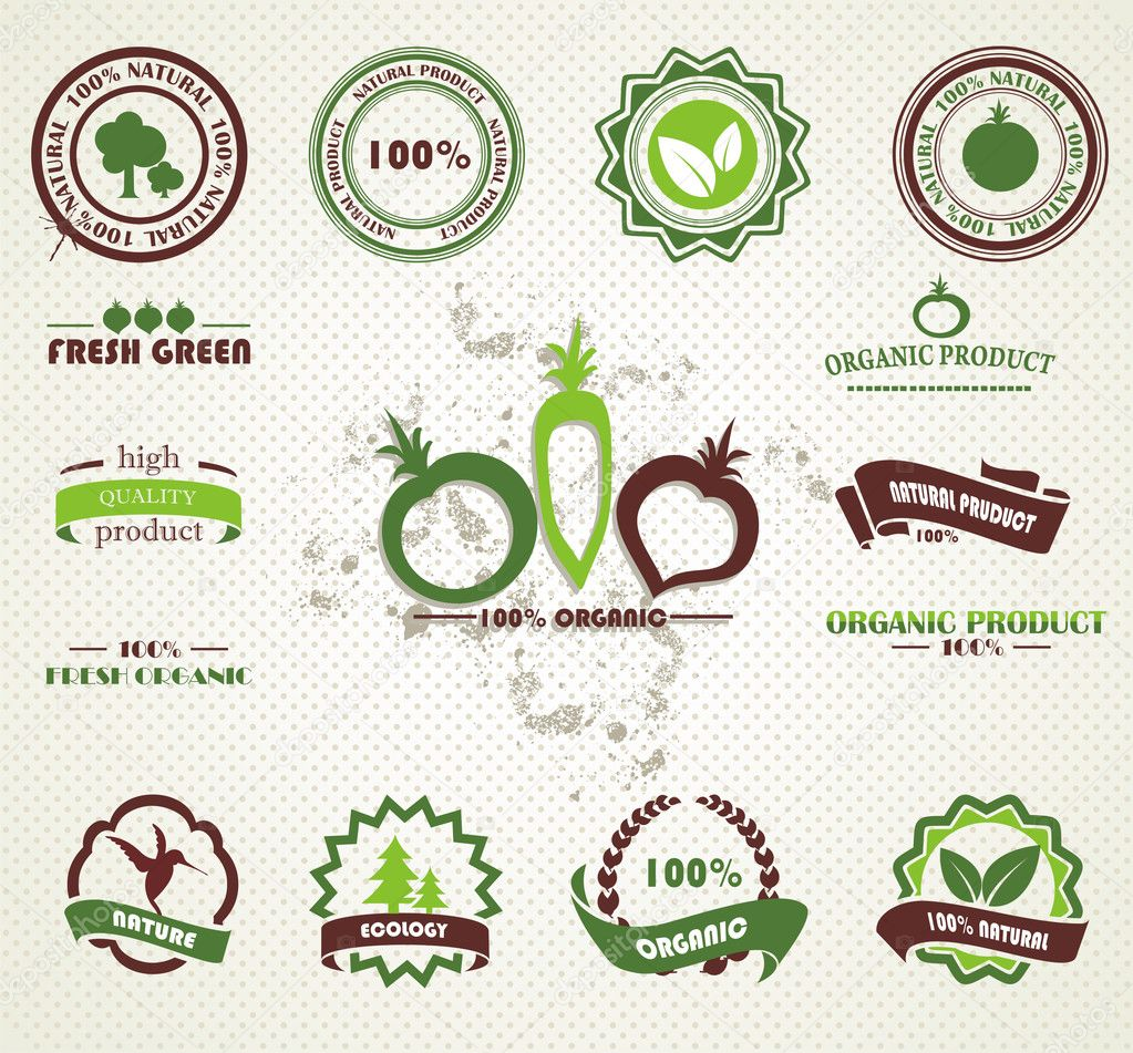 Set of organic and farm fresh food badges and labels — Stock Vector #9681008