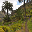 Mountainous landscape on la gomera — Stock Photo
