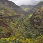 Tropical landscape of la gomera island — Stock Photo #9376012