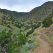 Landscape of la gomera island — Stock Photo #9424238