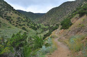 Landscape of la gomera island — Stock Photo