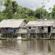 Royalty-Free Stock Photo: Aboriginal houses in the Amazon