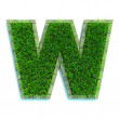 Stock Photo: Grass letter
