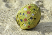 Coconut painted — Stock Photo