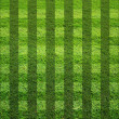 Stock Photo: Blank grass field