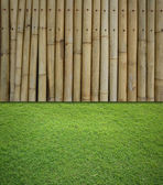 Bamboo and grass background — Stock Photo