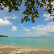 Seascape of samui beach - Foto de Stock