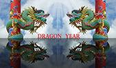 Rok draka — Stock fotografie