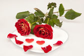 Two red roses and two hearts on a white plate — Stock Photo