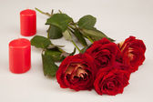 Red roses and two candles on a white background — Stock Photo