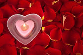 Candle in rose petals on a red background — Stock Photo